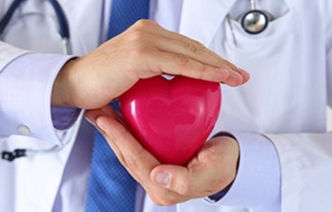 doctor holding a heart-shaped object
